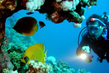 scuba diving Goa price